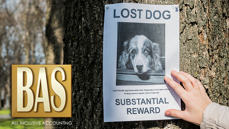 Lost Pet? Don't Become a Fraud Target